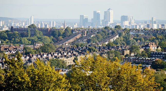 The value of London's trees is proven in ground breaking report